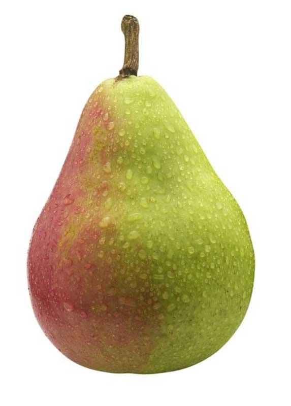 изготовления картинка одной груши фруктами четыре позы